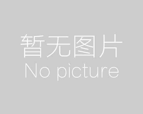 MITSUBISHI MAZDA Drum Brake shoes OEM:W029-33-310 MK3366, OK-BS479R